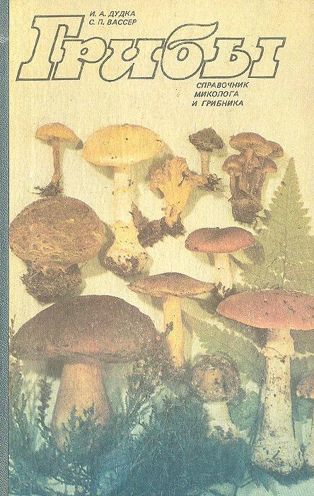 узоры справочник грибника с картинками этот образ