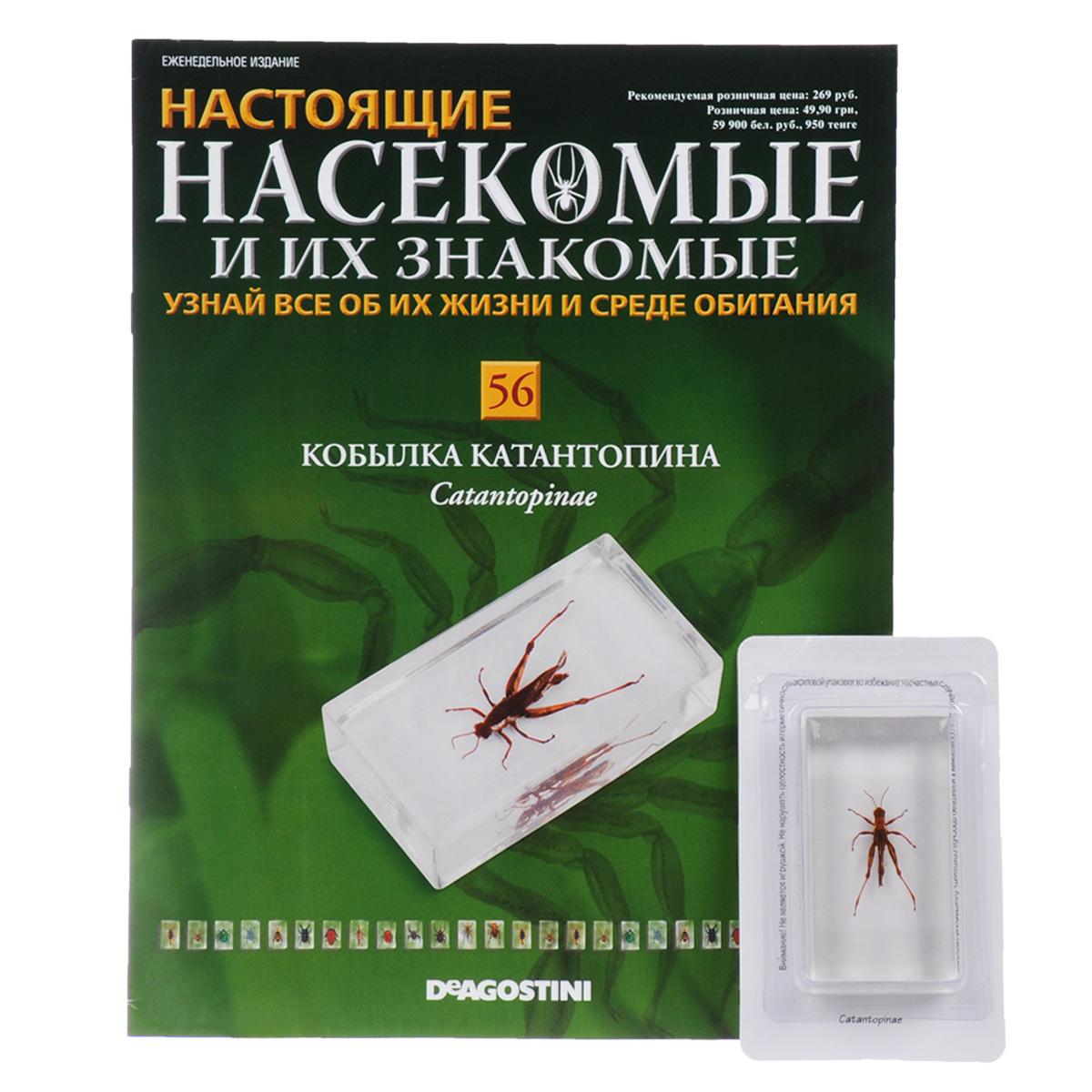 И журнал их описание насекомые знакомвые
