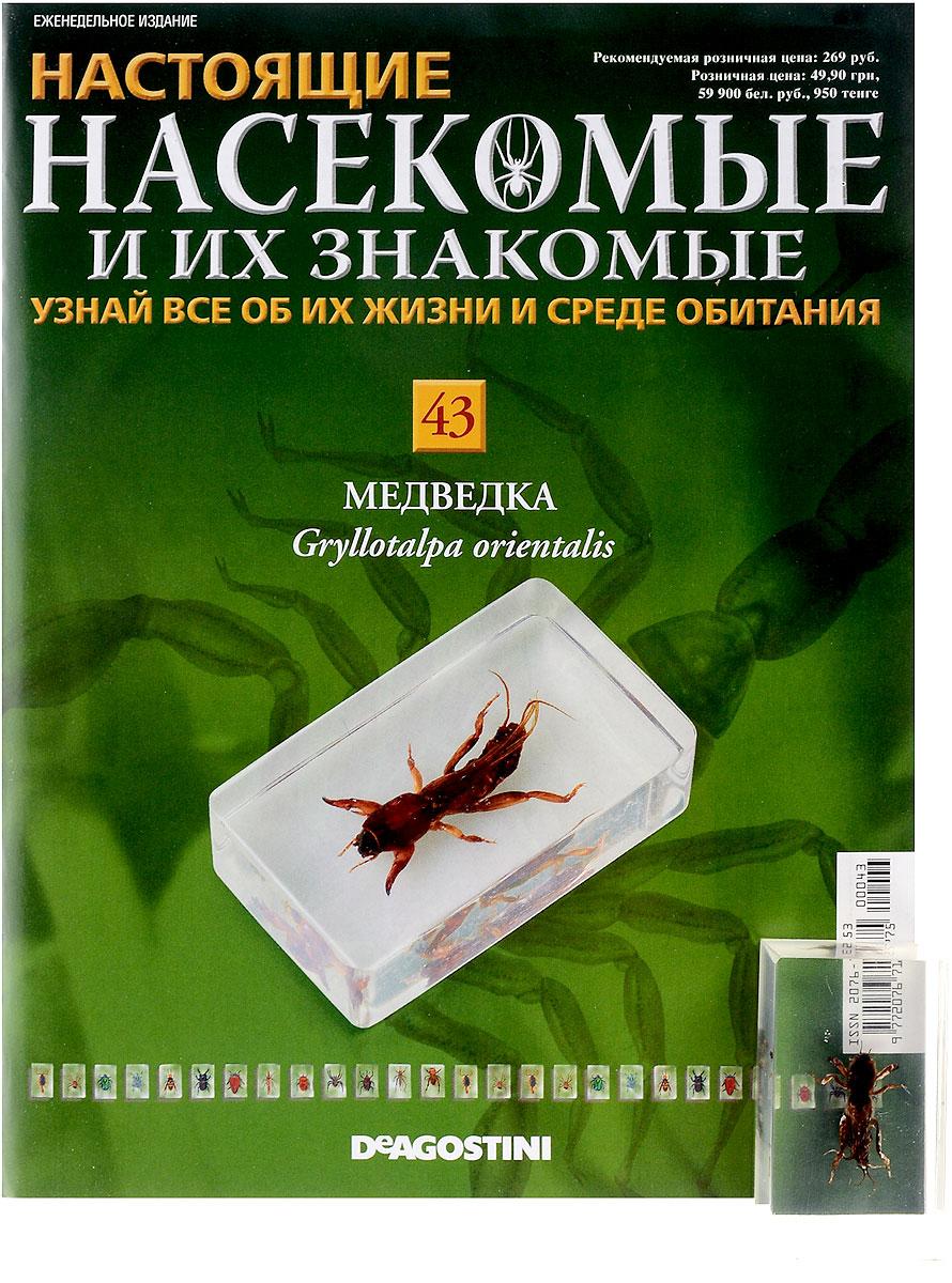 и знакомые насекомые их в купить минске