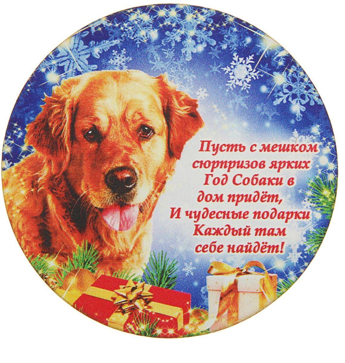 всего минтай, поздравление любимой собаке с новым годом кухни отлично подойдут